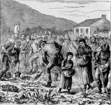 The Great Irish Potato Famine Starved a Million to Death alienstips